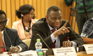 Dr. Babatunde Osotimehin, UNFPA Executive Director