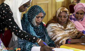 SWEDD Mauritania: 20 women beneficiaries of safe spaces, winners of the competition on the best projects of Income Generating Activities, funded and trained.
