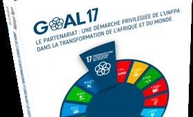 Publication d'un ouvrage exclusif sur l'ODD 17, qui favorise le partenariat pour la transformation de l'Afrique et du monde.